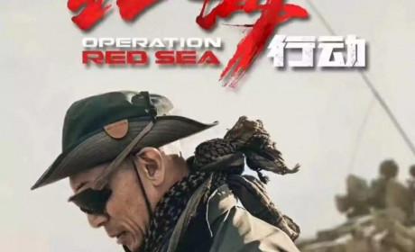 《红海行动》被香港截胡,中国内地会选哪部影片冲击奥斯卡?