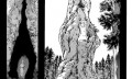 进击的巨人122话:巨人之谜终于揭晓,这是一个罪恶的轮回