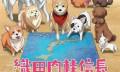 织田肉桂信长:当战国武将转世成狗