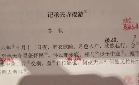 《记承天寺夜游》中苏轼被贬真相 一个糟糕的政治老师